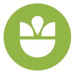 orlando logo design