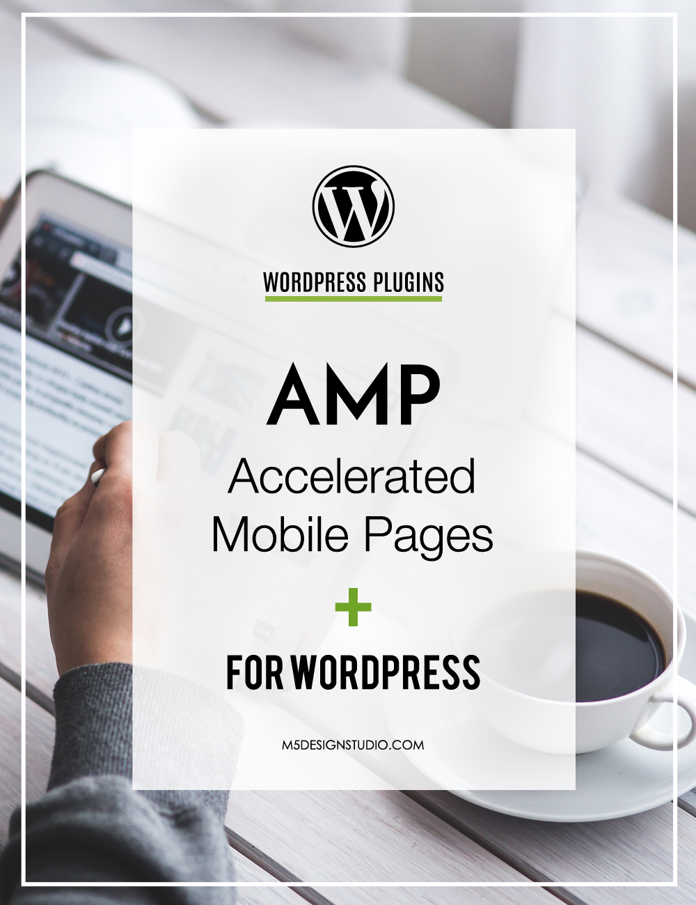 wordpress AMP orlando