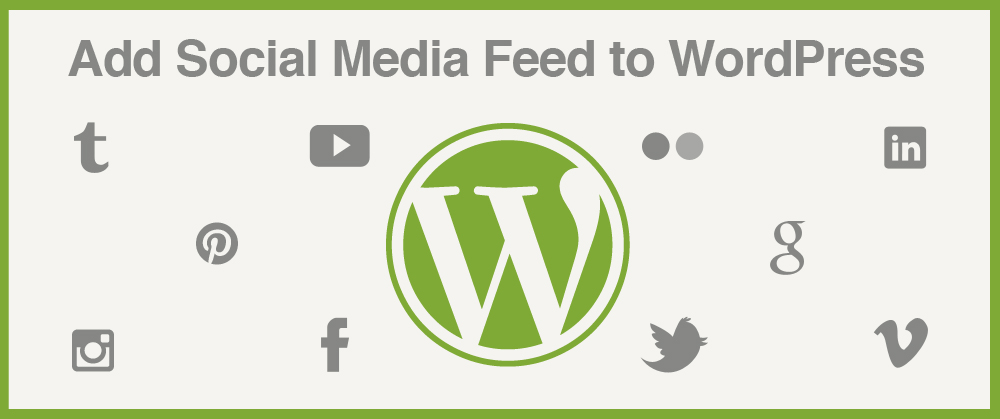 orlando wordpress social media feed plugins