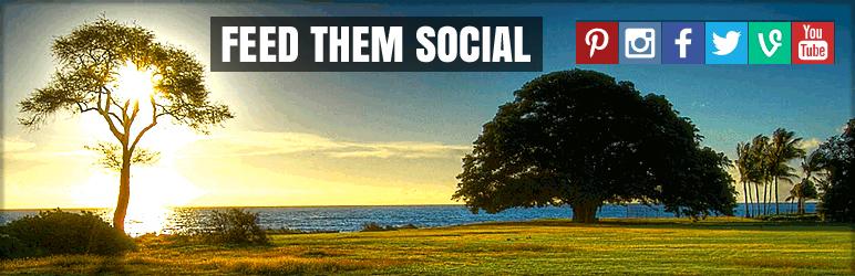 wordpress orlando social media