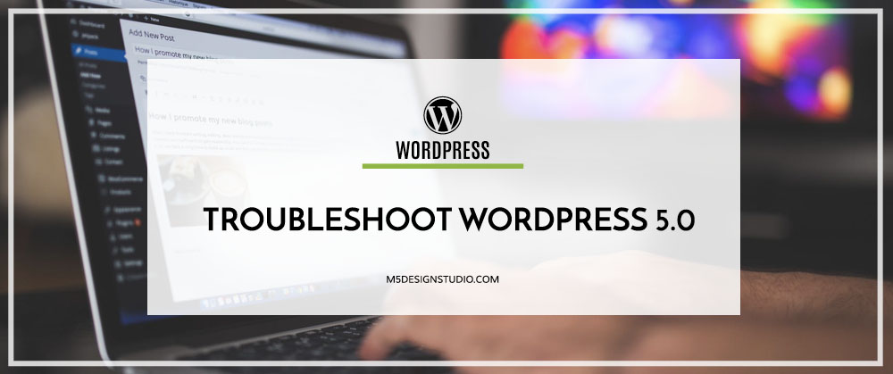 tRoubleshoot WordPress 5.0